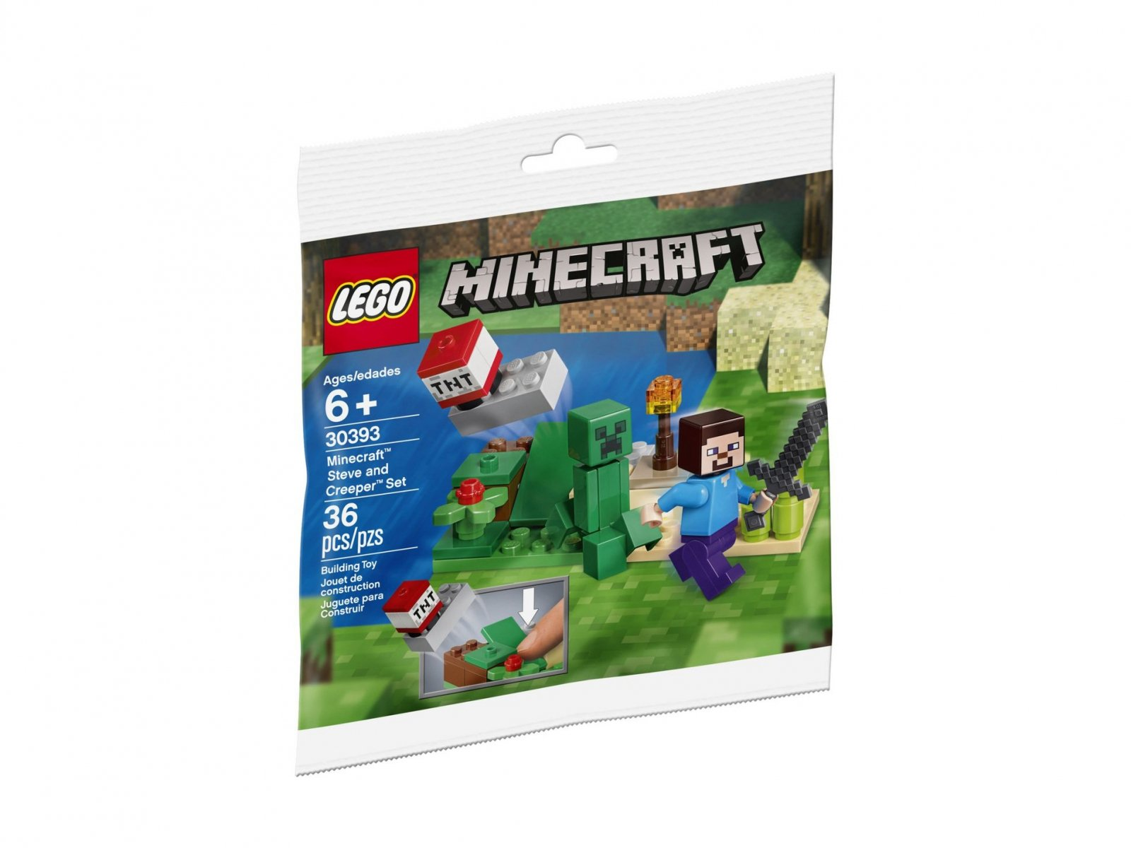 LEGO Minecraft™ Steve and Creeper™ Set 30393
