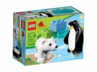 LEGO 10501 Duplo® Przyjaciele z zoo