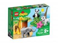 LEGO 10904 Duplo® Małe Zwierzątka
