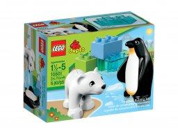LEGO Duplo 10501 Przyjaciele z zoo