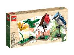 LEGO Ideas 21301 Ptaki